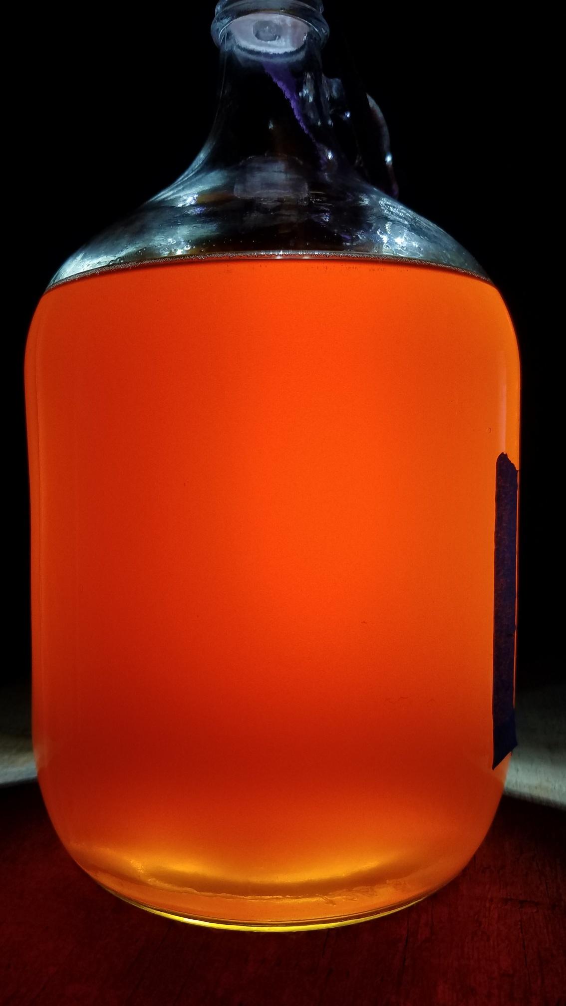 1 gallon Coffee_mead__3_Dec_2020.jpeg