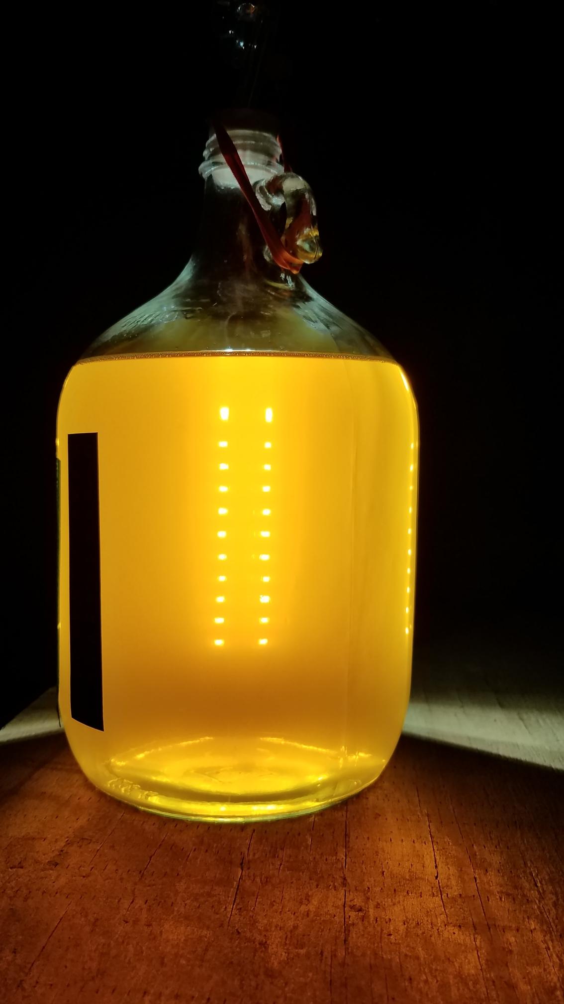 1 gallon Dandelion_mead_3_Dec_2020.jpeg