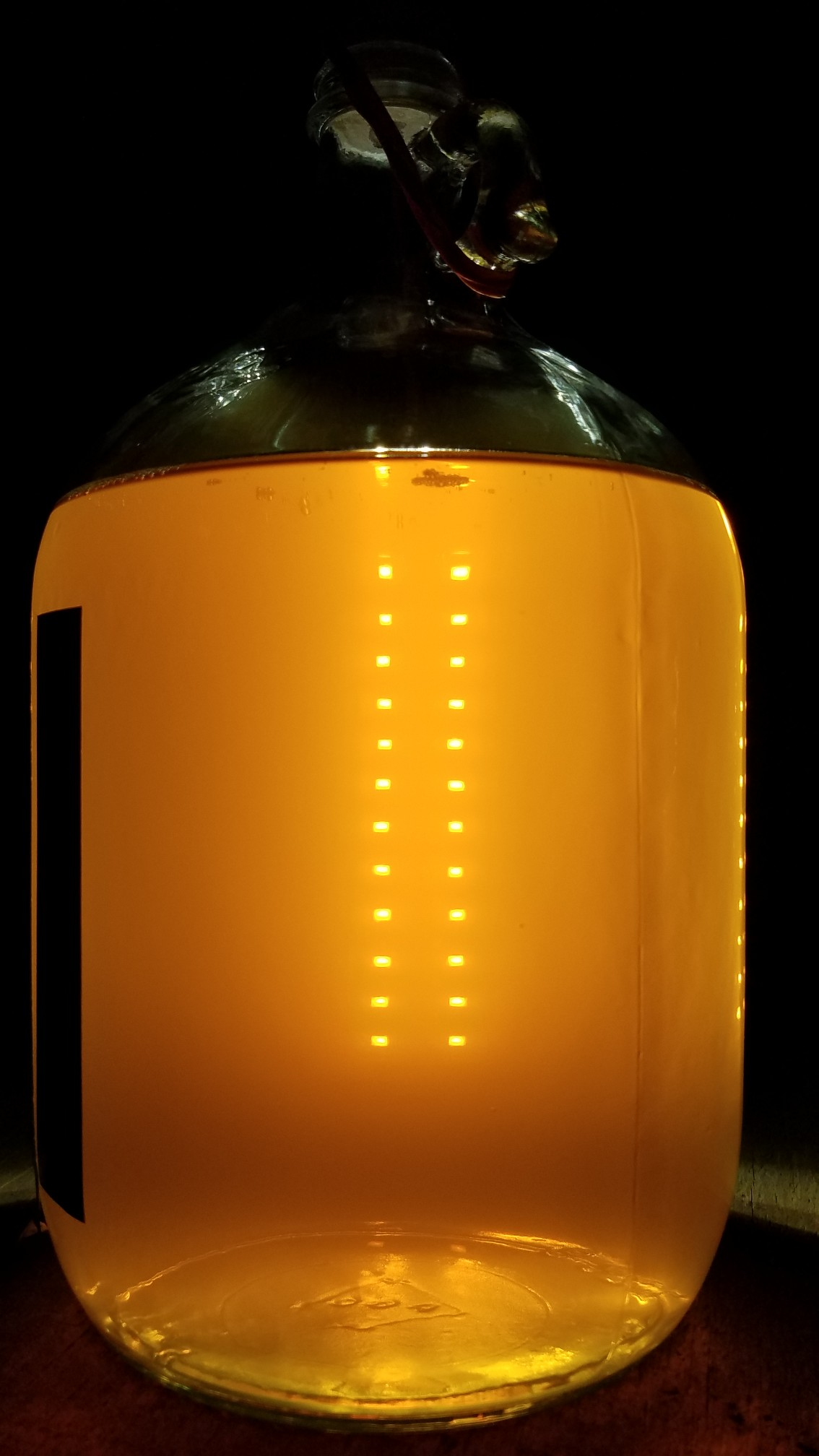 1 gallon Orange_peel_mead__3_Dec_2020.jpeg