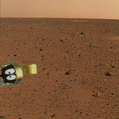 1st Photo From Mars Lander.jpg
