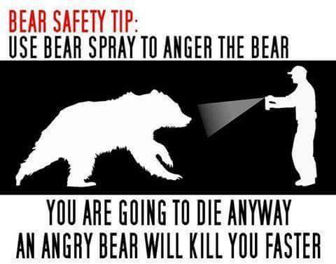 Bear Safety Tip.jpg