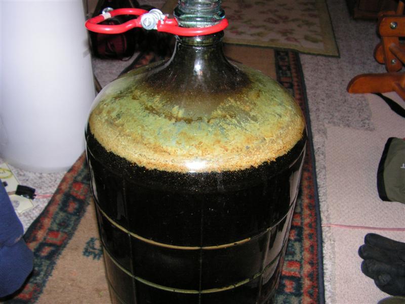 Beer infection 001 (Medium).jpg