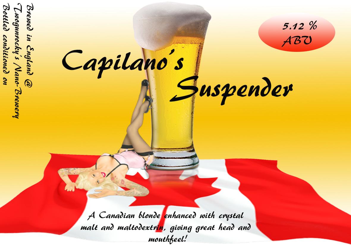 Capilano's suspender.jpg
