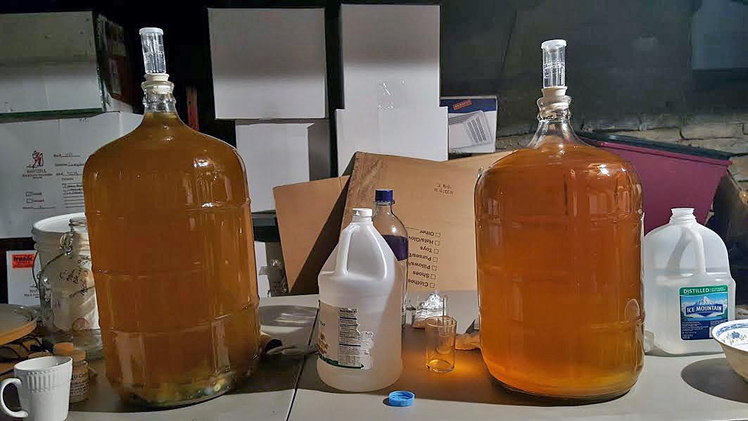 Cider-carboys-2016.jpg
