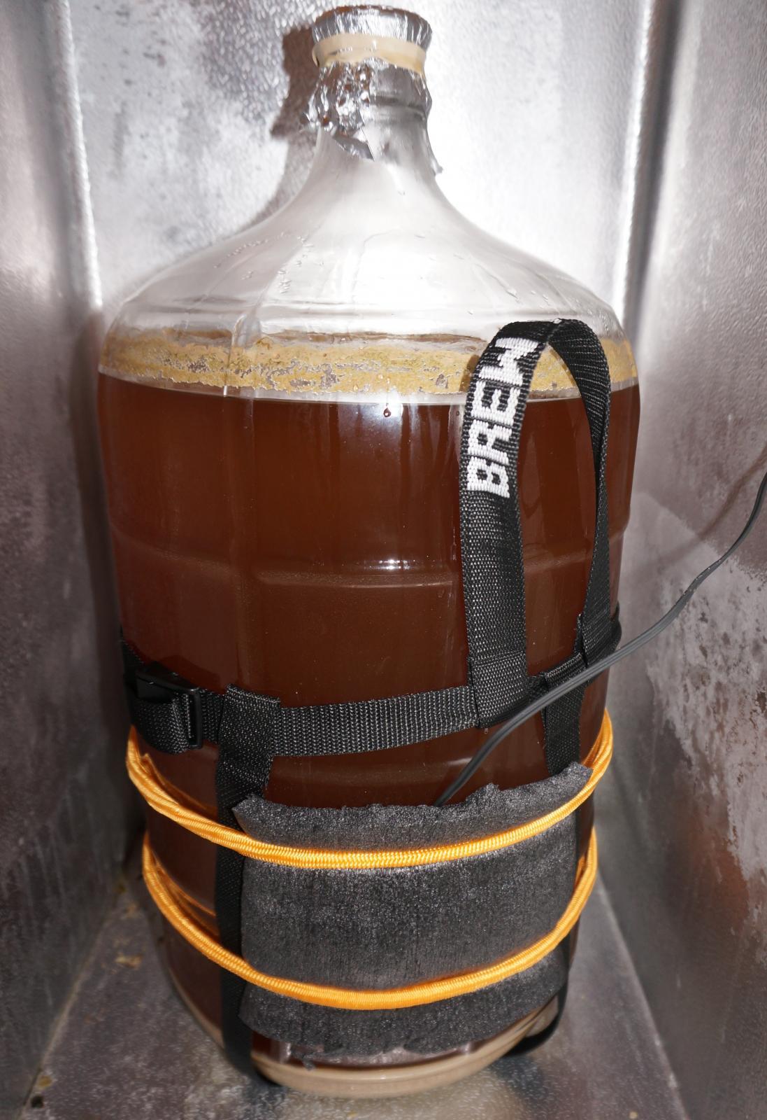 Cold Crashed Beer.jpg