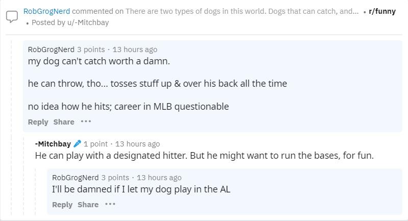 dog can't catch.jpg