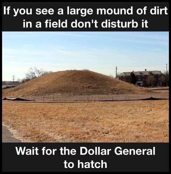 Dollar General hatching.jpg
