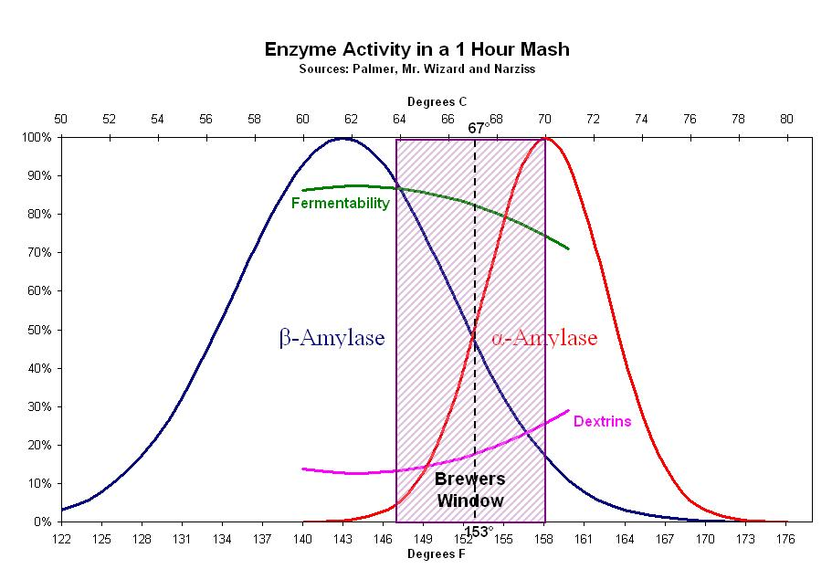 Enzyme Activity in Mash.jpg