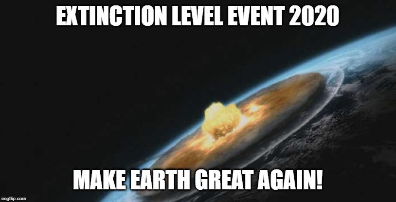 Extinction level event 2020 meme.jpg