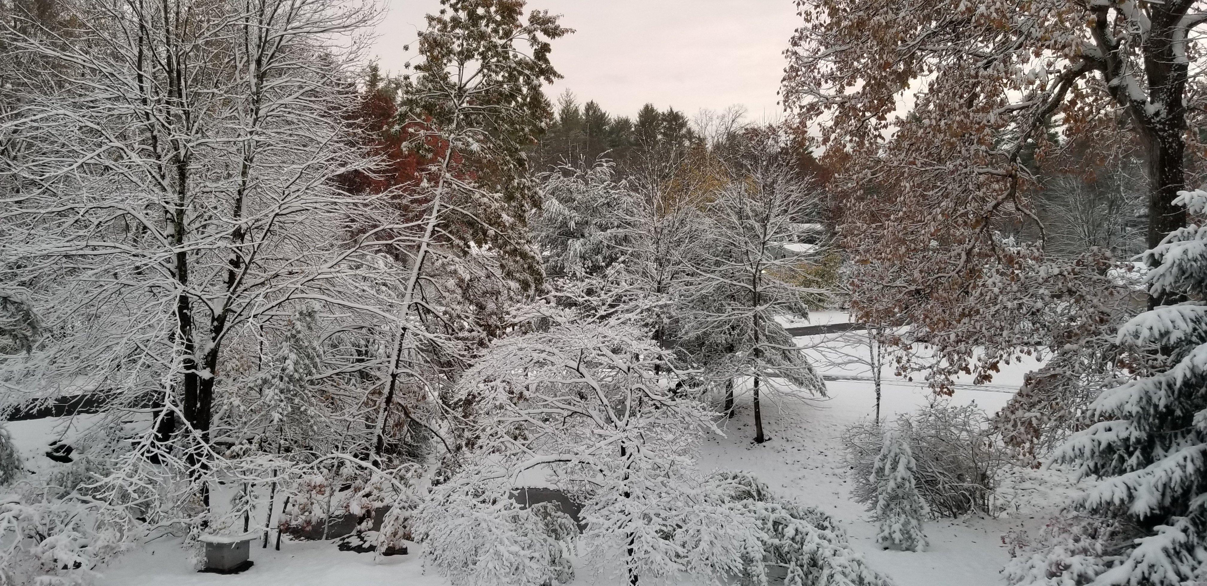 first_snow_04.jpg