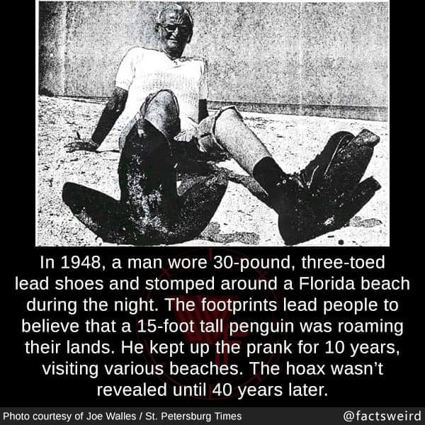 Giant Penguin Hoax.jpg