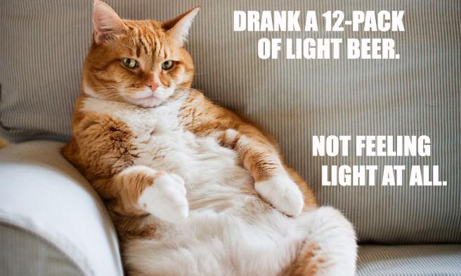 lightbeercat.jpg