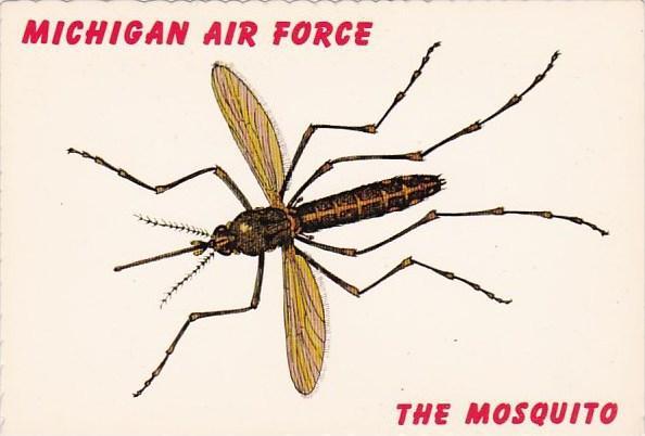Michigan Air Force.jpg