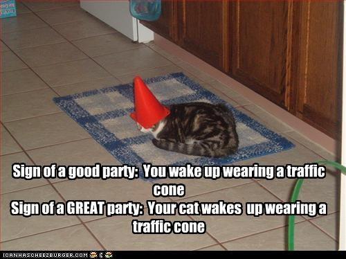 partycat.jpg