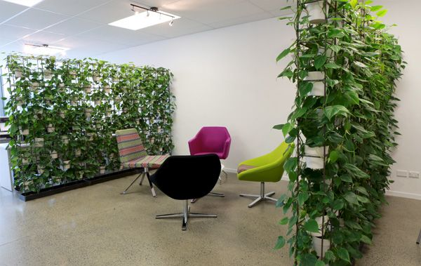 plantwalls.jpg