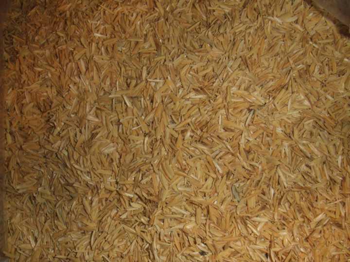 rice hulls.jpg