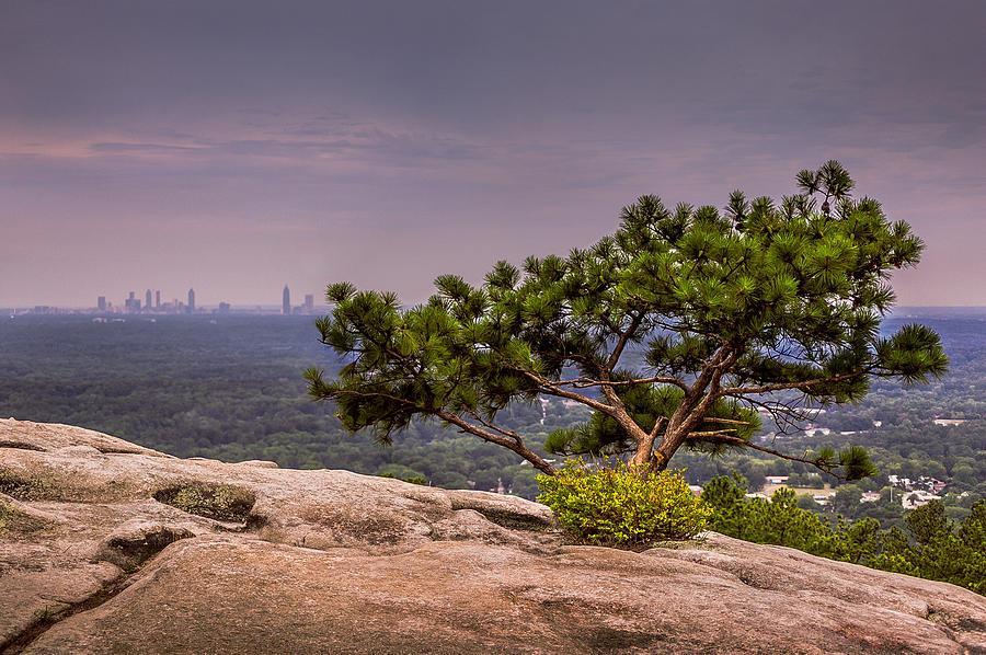 skyline4.jpg