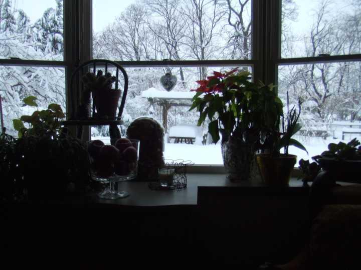 Snow_110127_06lr.jpg