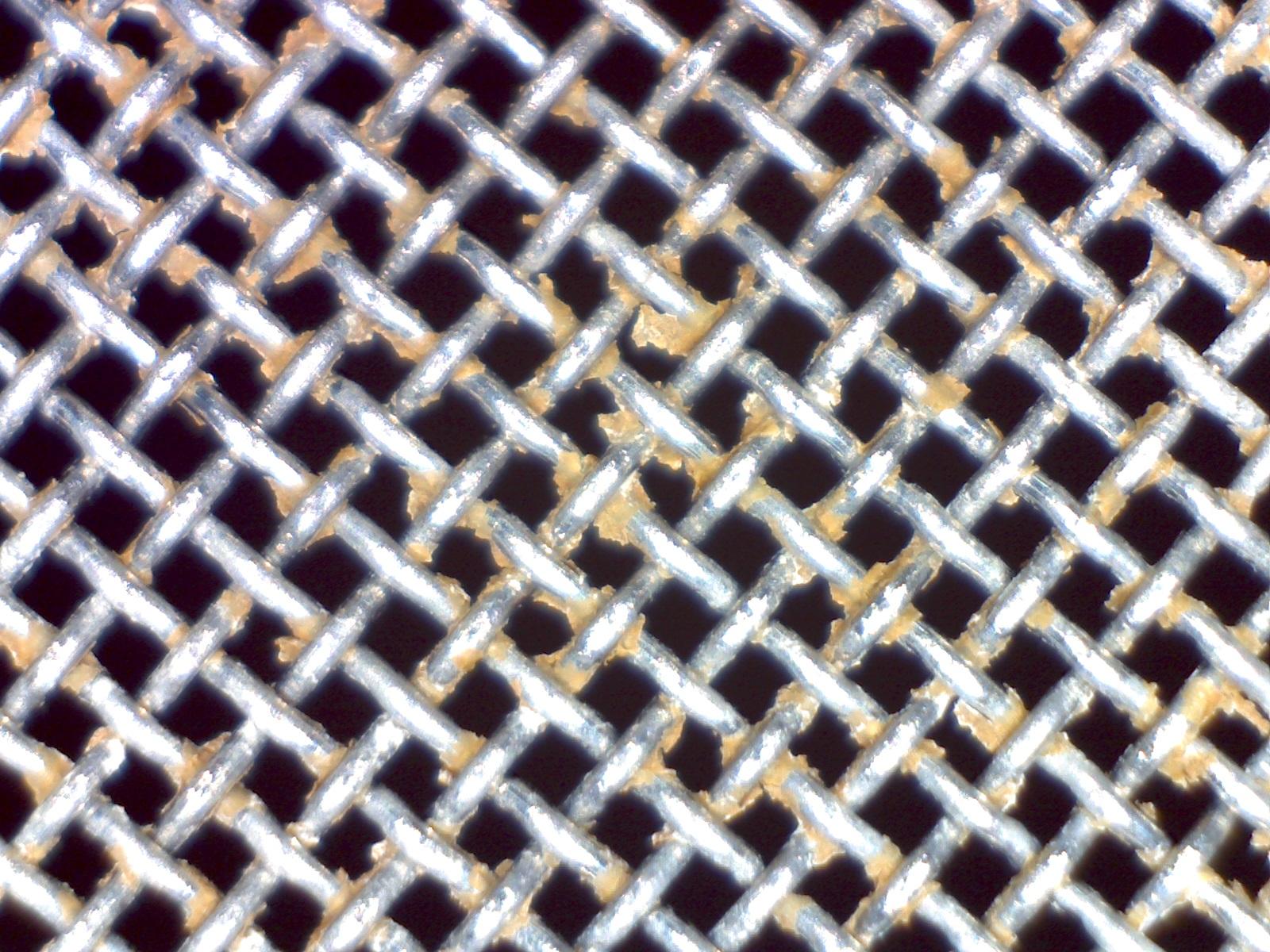 spider_cleaning_02.jpg