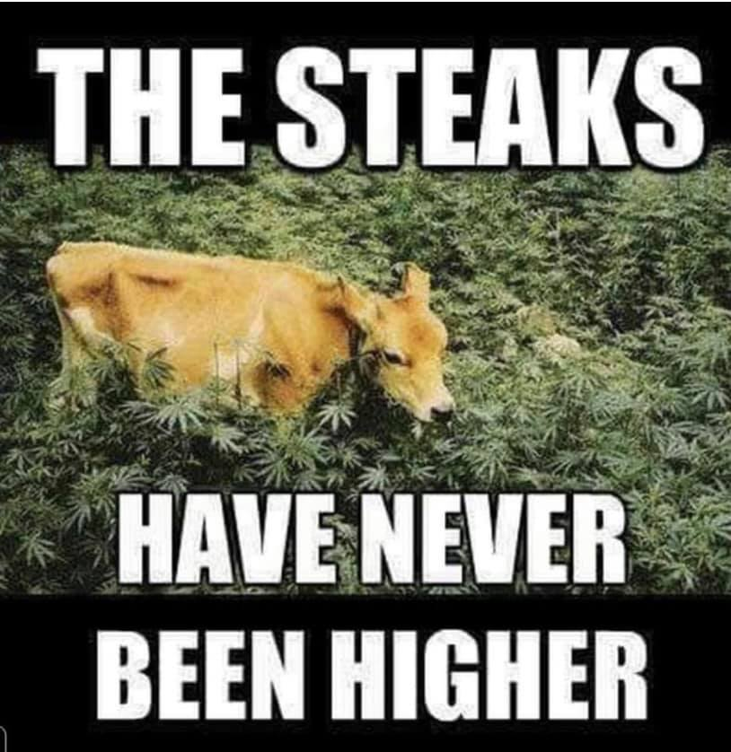 The Steaks Have Never Been Higher.jpg