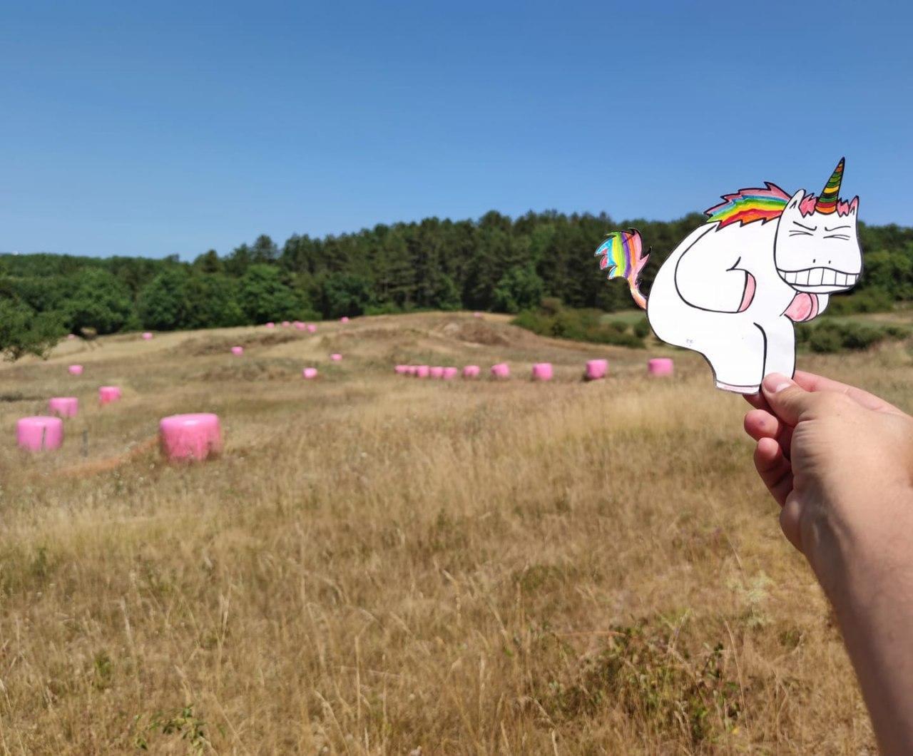 unicornpoo.jpg