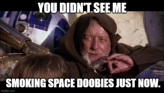 You Didn't See Me Smoking Space Doobies.jpg